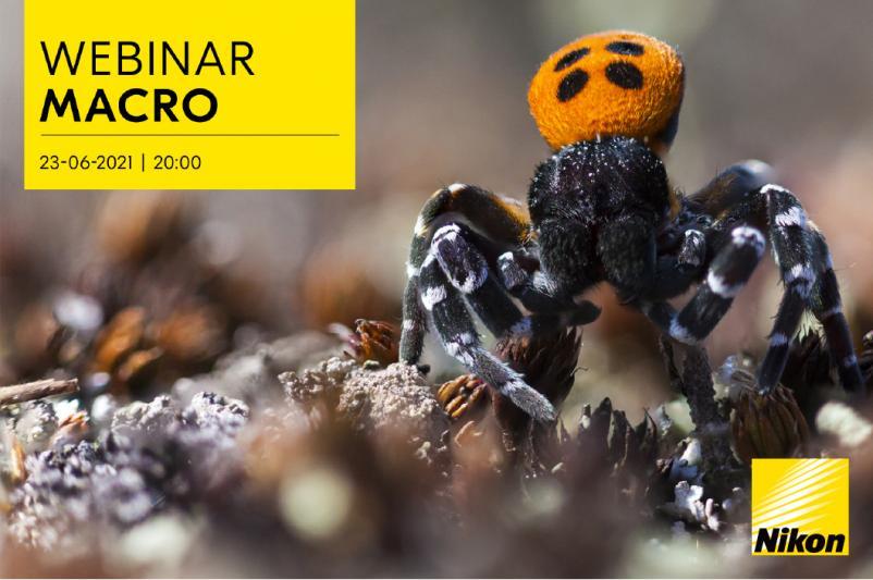 Nikon Webinar - Macro Fotografie